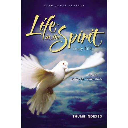 KJV Life In The Spirit Study Bible-Burgundy Bonded Leather