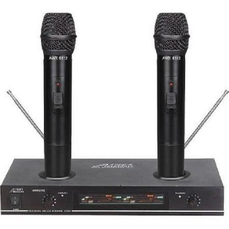 Handheld Rechargeable Wireless Professional Karaoke Microphone GREAT SOUND
