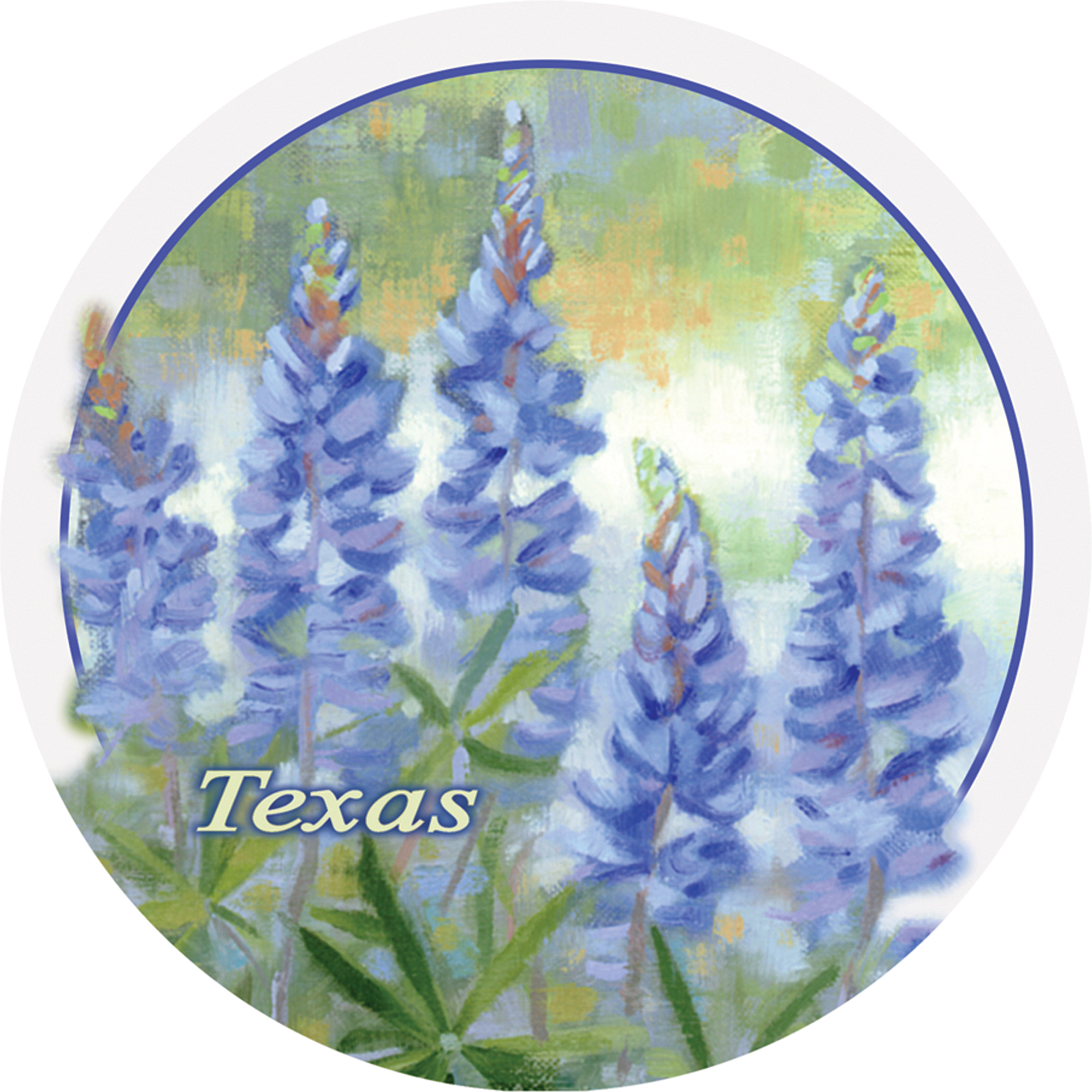 Thirstystone Occasions Drink Coasters, Bluebonnets, Texas
