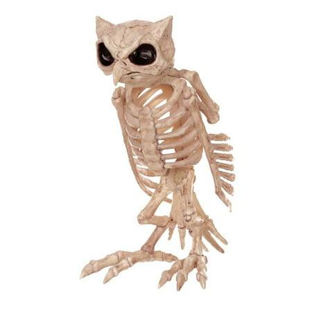 Halloween Skeleton Owl - 13.5 in.