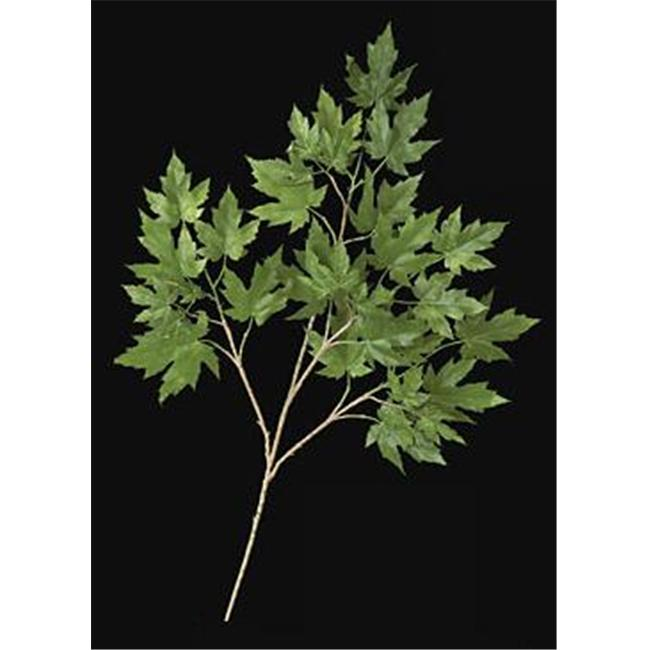 Autograph Foliages PR-004G - 28 Inch Fire Retardant Rock Maple Branch - Green - Dozen