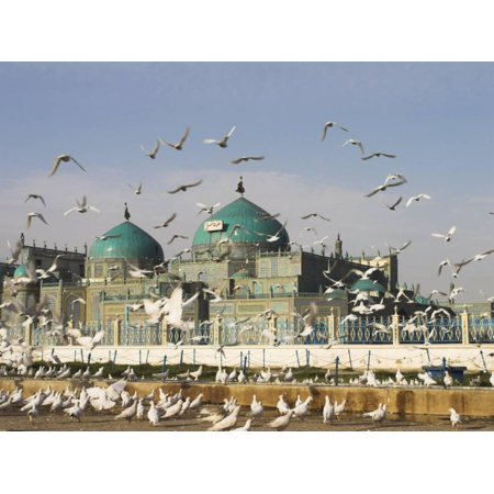 The Famous White Pigeons, Shrine of Hazrat Ali, Mazar-I-Sharif, Balkh Province, Afghanistan Print Wall Art By Jane