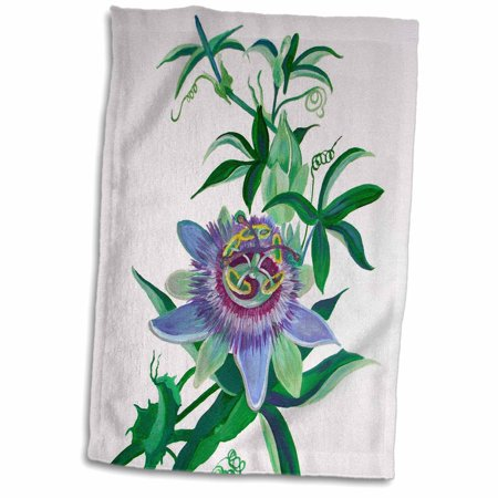 3dRose Passion Flower - flower, passion vine, passion flower, purple, nature, passiflora, easter - Towel, 15 by 22-inch Growing Passion Flower Vine