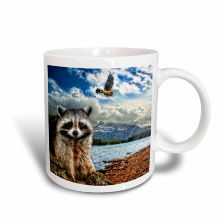 3dRose Raccoon and a hawk in a mountain lake setting. 5 photographs combined., Ceramic Mug, 11-ounce
