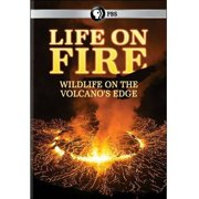Life On Fire: Wildlife On The Volcano's Edge (Widescreen) by PBS DIRECT