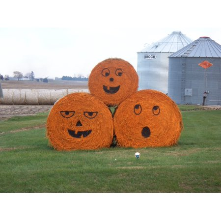 Canvas Print Halloween Bale Hay Farming Season Pumpkin Farm Stretched Canvas 10 x 14](Hay Bale Decorations For Halloween)