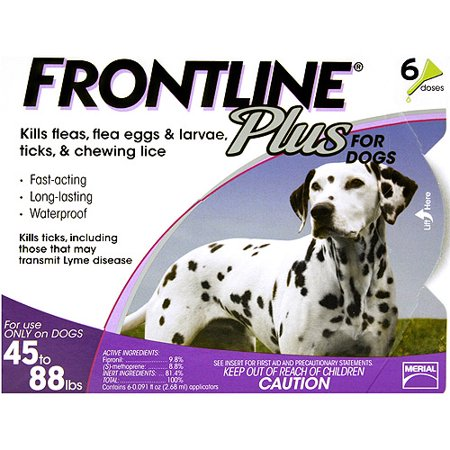 Frontline Plus Flea & Tick Topical Treatment for Large Dogs, 6 Monthly Doses