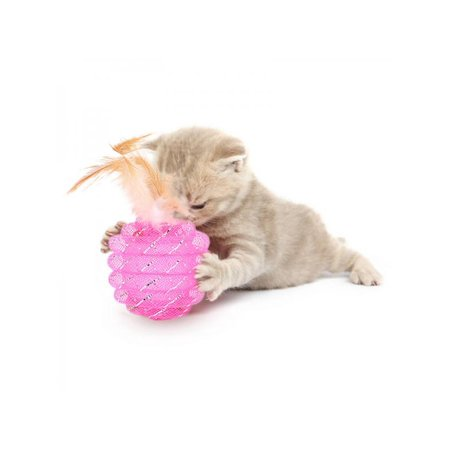 Lavaport Pet Cat Interactive Ball Toy with Feather Kittens Teaser Exercise Rolling Ball