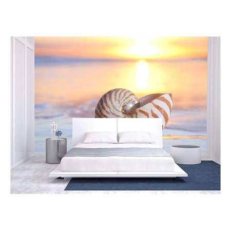 wall26 - Nautilus Shell in The Sea, Sunrise. Shallow Dof - Removable Wall Mural | Self-Adhesive Large Wallpaper - 66x96 inches