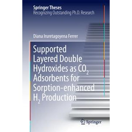 Supported Layered Double Hydroxides as CO2 Adsorbents for Sorption-enhanced H2 Production - - Double Layer Support
