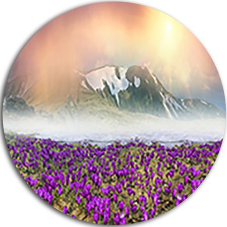 - Design Art 'Spring Crocus Flowers' Graphic Art Print on Metal