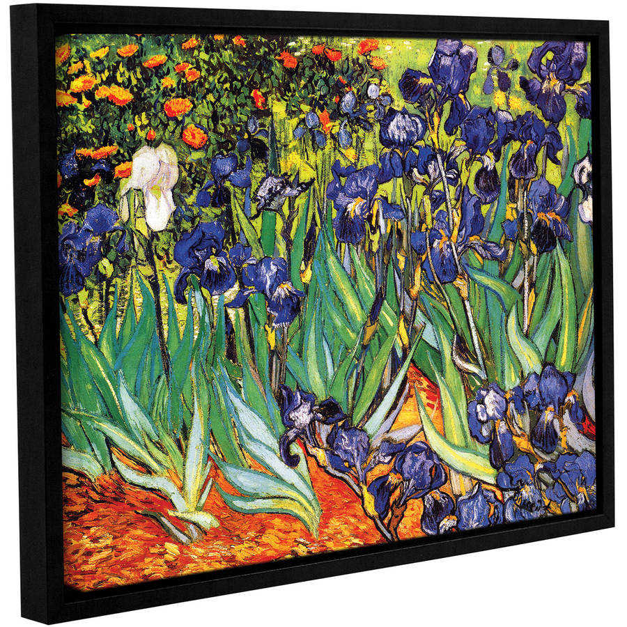 "Vincent Van Gogh ""Irises In The Garden"" Floater-Framed Gallery-Wrapped Canvas"