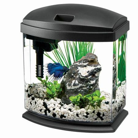 Aqueon MiniBow Aquarium LED Starter Kit, 1 Gallon, Black 200 Gallon Fish Tanks