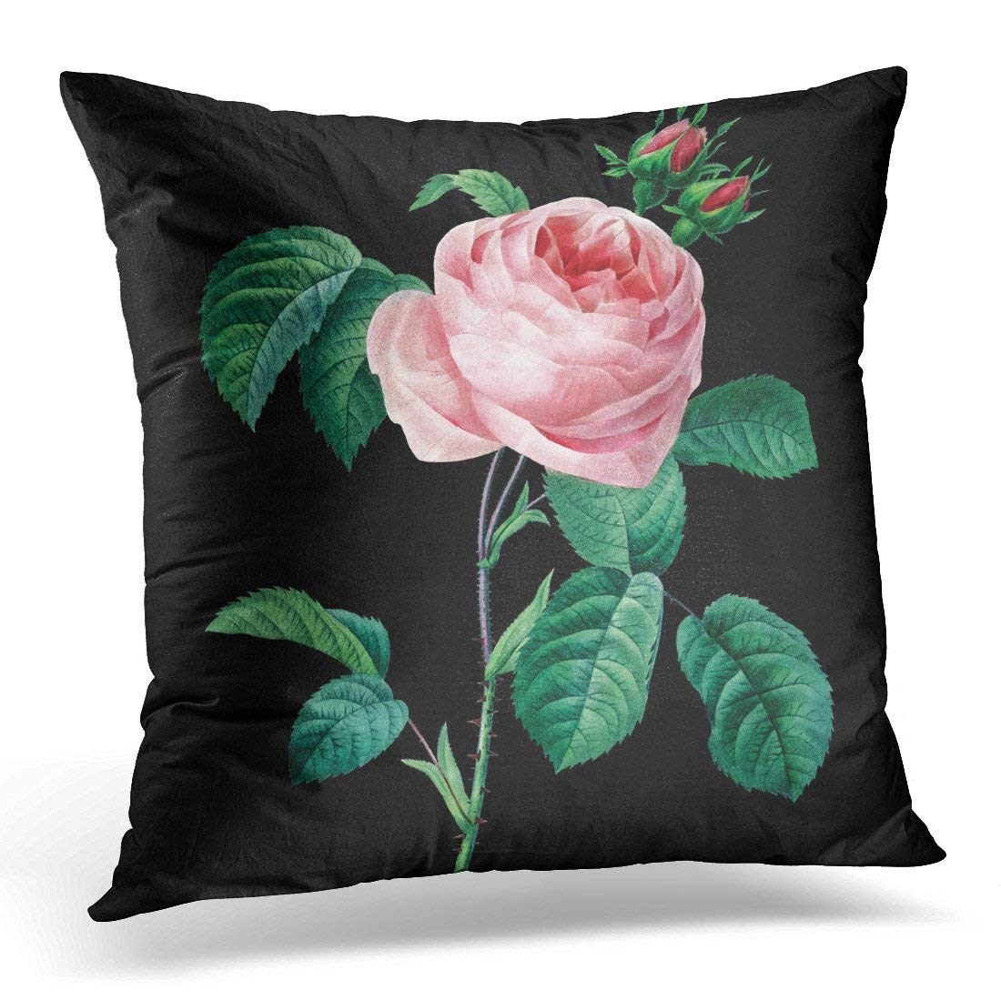 WOPOP Roses Pink Rose Black Floral Redoute Pillowcase Cover 20x20 inch