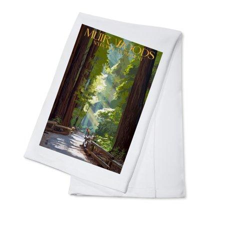 Muir Woods National Monument  California   Pathway   Lantern Press Artwork  100  Cotton Kitchen Towel
