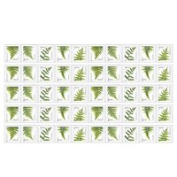 Ferns 5 Strips of 10 USPS Forever Postage Stamps featuring 5 Different Designs of Ferns (50 Stamps)