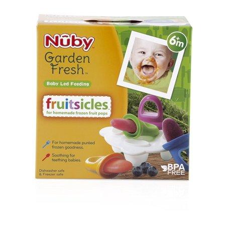 Garden Fresh Fruitsicle Frozen Pop Tray - image 1 of 2