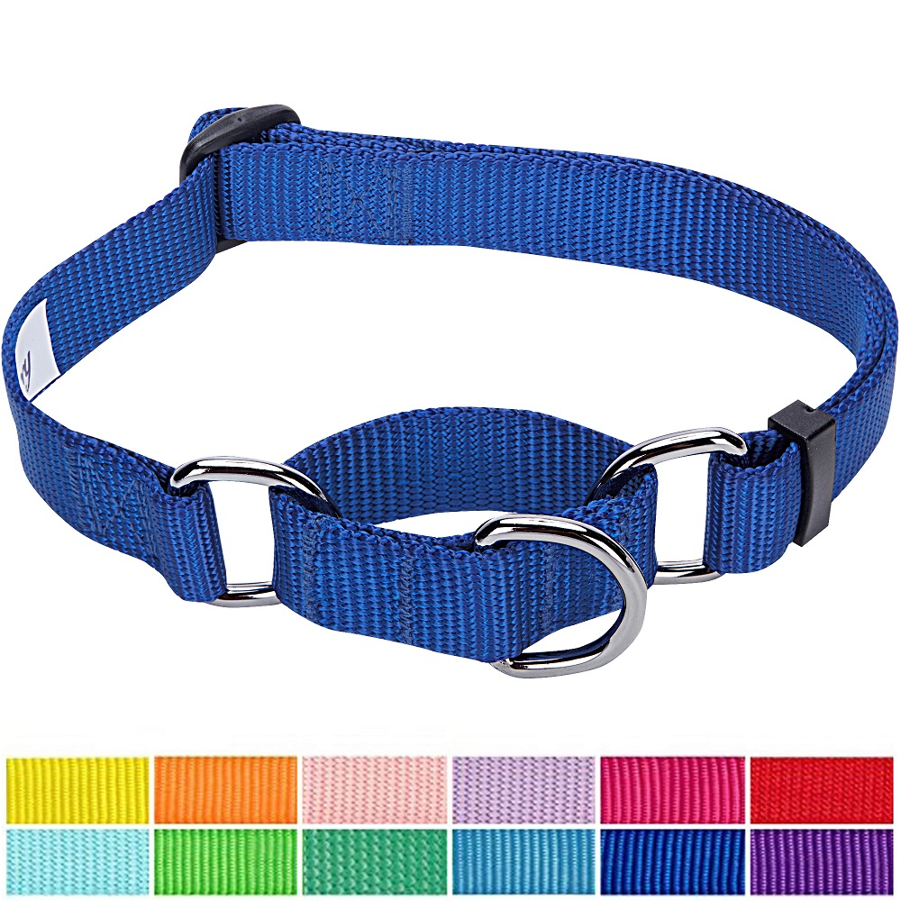 "Blueberry Pet Adjustable Dog Martingale Collar Made for Last, Royal Blue, Small, Neck 12""-16"""