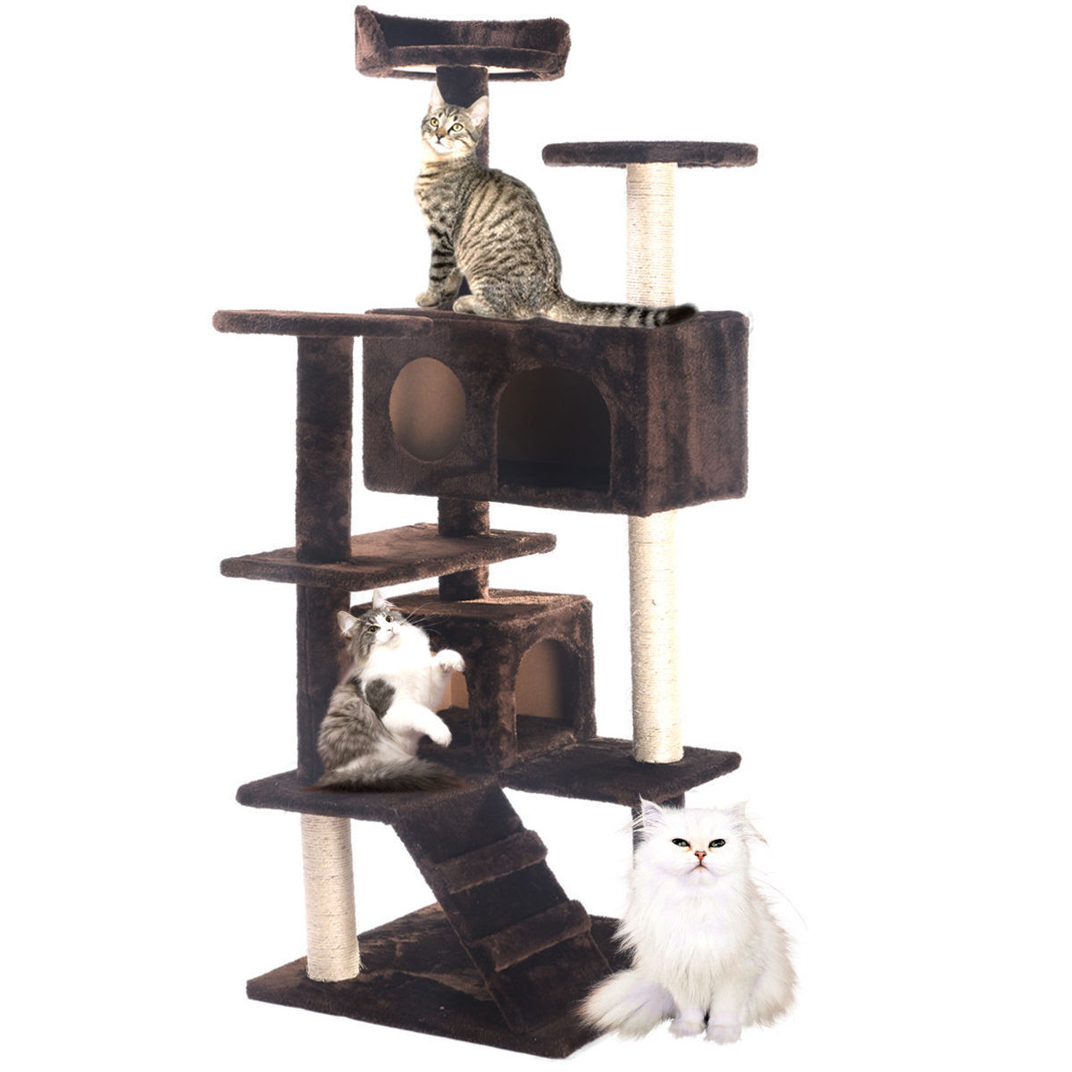 pet house cat tree tower condo furniture scratch post kitty play coffee new