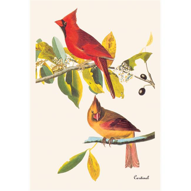 Buy Enlarge 0-587-03560-9P12x18 Cardinal- Paper Size P12x18