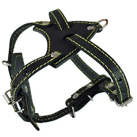 Genuine Leather Dog Harness, 16.5