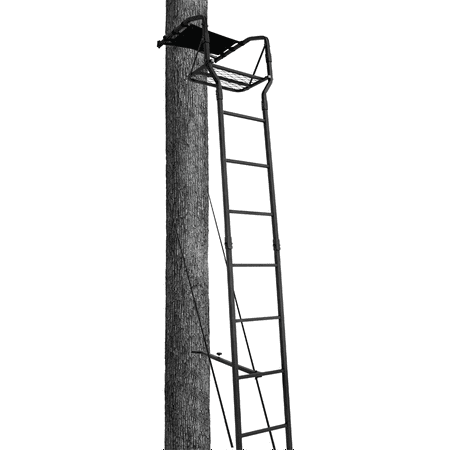 Big Game 15' Basic Ladderstand