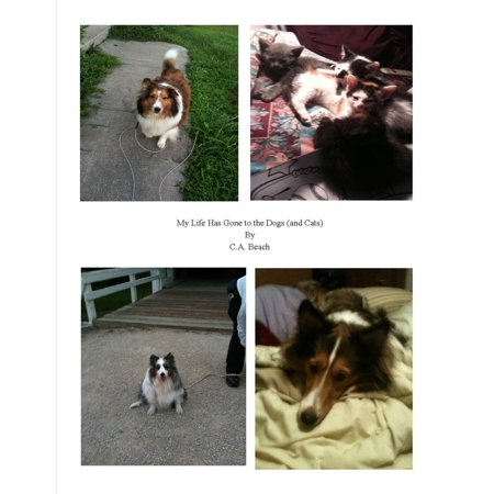 My Life Has Gone to the Dogs (and Cats) - eBook