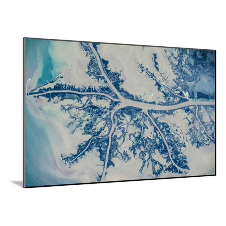 Satellite view of Mississippi River Delta, Louisiana, USA Wood Mounted Print Wall Art - 5 Rivers Delta Halloween