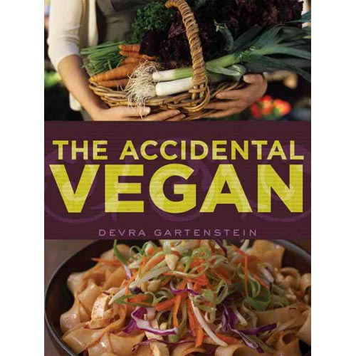 the accidental city book review