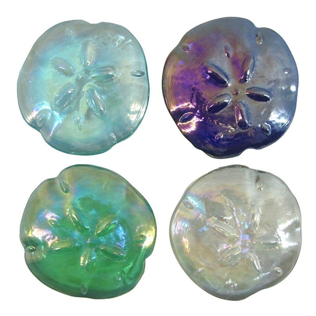 4 Glass Sand Dollar Paperweights
