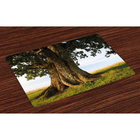 Nature Placemats Set of 4 Majestic Oak Tree on Grass Estonia Northern Europe Rural in Summer Landscape, Washable Fabric Place Mats for Dining Room Kitchen Table Decor,Cocoa Fern Green, by Ambesonne