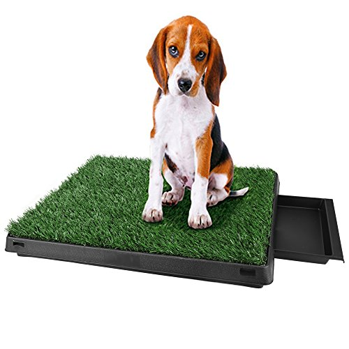 Puppy Pads Indoor Potty Potty Patch Dog Grass Mat Trainin...