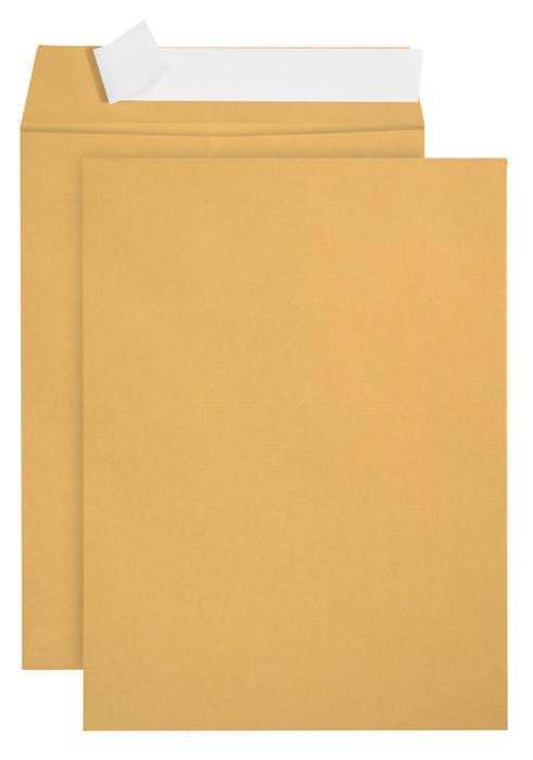 Blue Summit Supplies 6x9 Self Seal Envelopes, Golden Brown, 100 box by Blue Summit Supplies