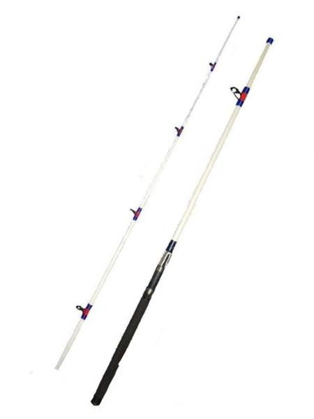 15 30 Lb 10 Ft Surf Rod 2pc Saltwater Fishing Great White Hope Walmart Com Walmart Com