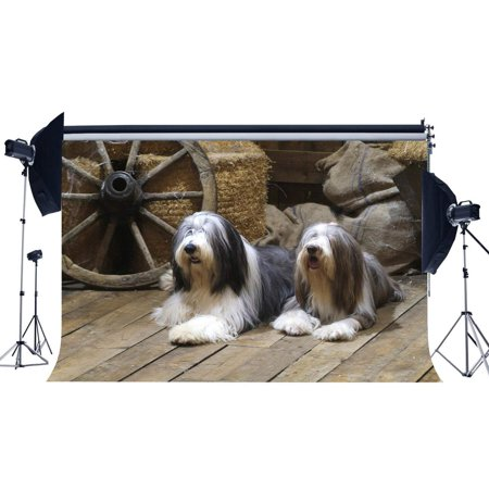 Old West Props (ABPHOTO Polyester 7x5ft Old Barn Backdrop Straw Haystack Backdrops Vintage Old Wheel West Cowboy Shabby Gunny Bag Dogs on Nostalgia Stripes Wood Floor Photography Background for Photo Studio)