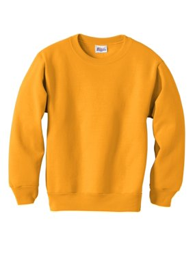 Hanes Boys 4-18 EcoSmart Fleece Sweatshirt
