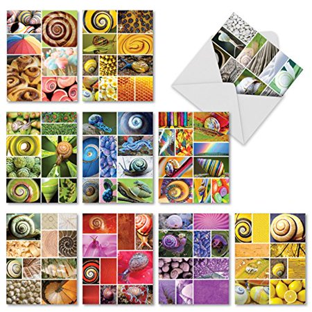 'M2348OCB GOING SPIRAL' 10 Assorted All Occasions Note Cards Featuring a Composition of Colorful Snails Combined with Bright Fun Complimentary Images with Envelopes by The Best Card Company