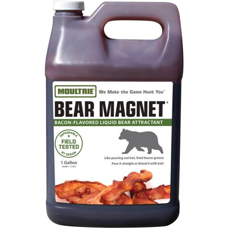 Moultrie Bear Magnet, Savory Bacon