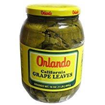 Orlando California Grapes Leaves, 16