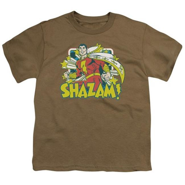 Trevco Dc-Shazam Stars - Short Sleeve Youth 18-1 Tee - Safari Green, Extra Large
