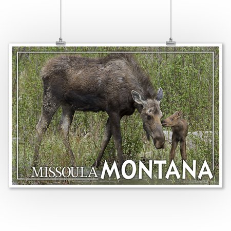 Missoula, Montana - Mother Moose and Baby - Lantern Press Photography (James T. Jones) (9x12 Art Print, Wall Decor Travel Poster)