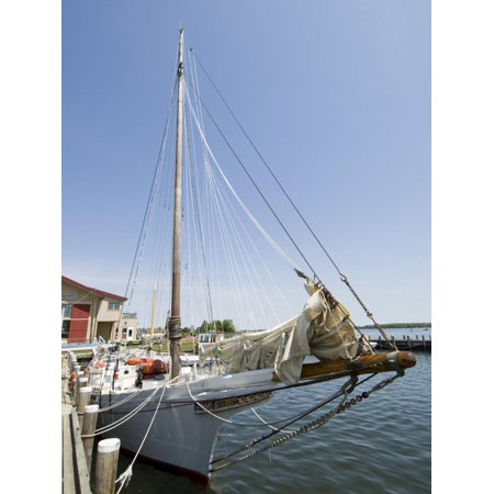 Sailing Chesapeake Bay - Skipjack Sailing Boat, Chesapeake Bay Maritime Museum, St. Michaels, Maryland, USA Print Wall Art By Robert Harding