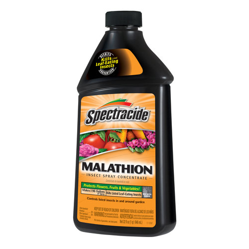 Spectracide Malathion Concentrate, 1 qt