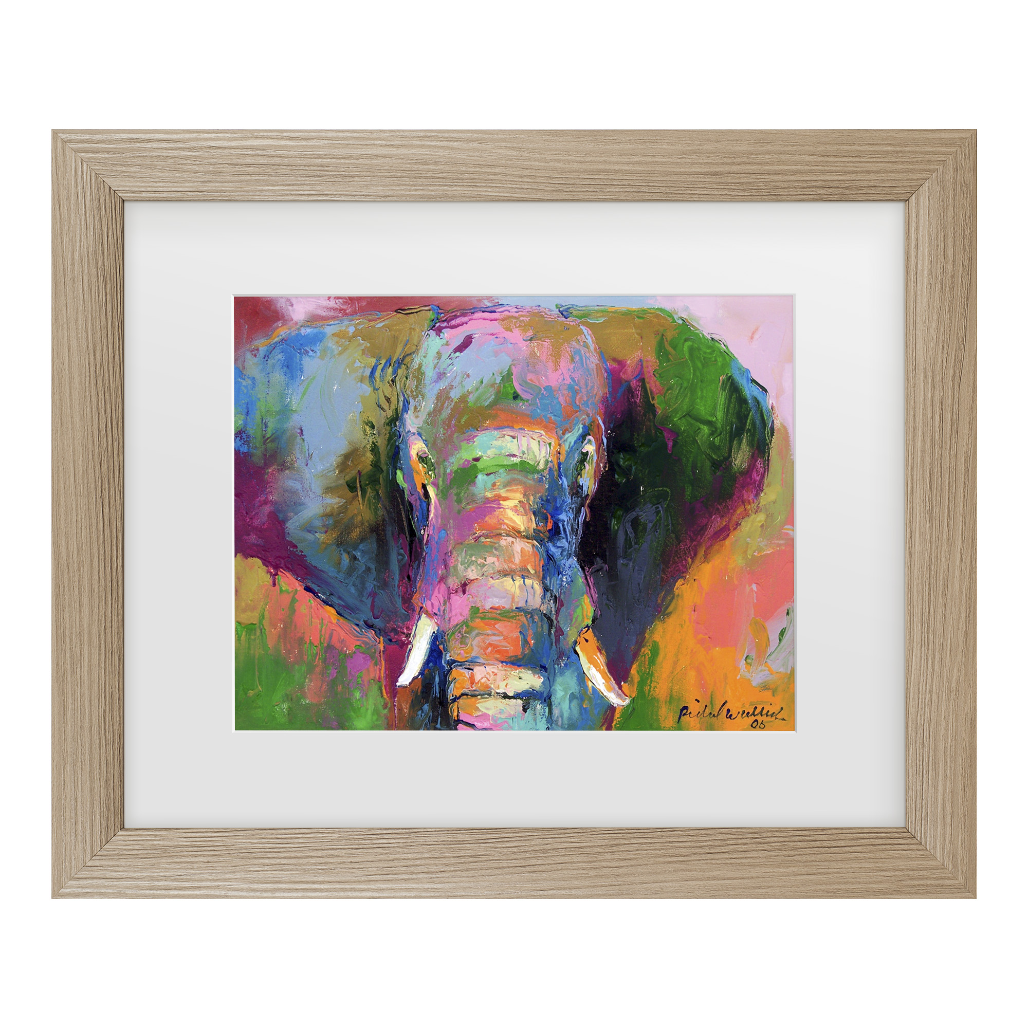 Trademark Fine Art 'Elephant 2' Matted Framed Art by Richard Wallich