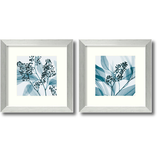 Amanti Art 'Eucalyptus' by Steven N. Meyers 2 Piece Framed Photographic Print Set