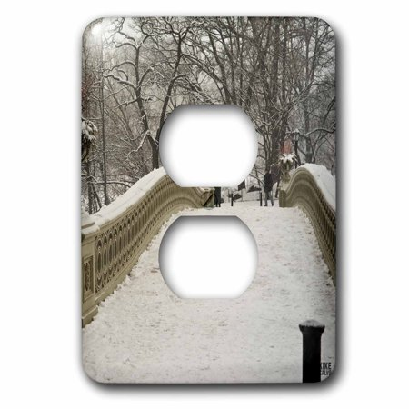 3dRose Snow blizzard in Central Park Manhattan New York City - 2 Plug Outlet Cover (lsp_10313_6) (Park City Outlets)