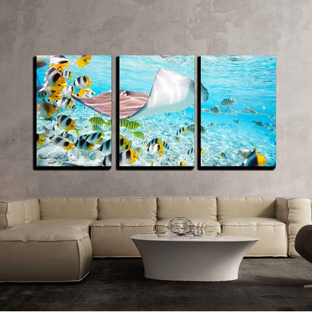 "wall26 - 3 Piece Canvas Wall Art - Colorful Fish, Stingray and Black Tipped Sharks Underwater in Bora Bora Lagoon - Modern Home Decor Stretched and Framed Ready to Hang - 24""x36""x3 Panels"