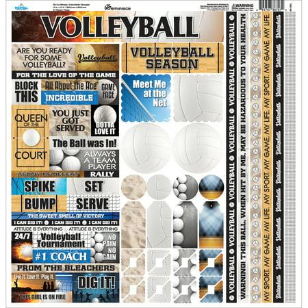 - Volleyball Cardstock Sticker, 12