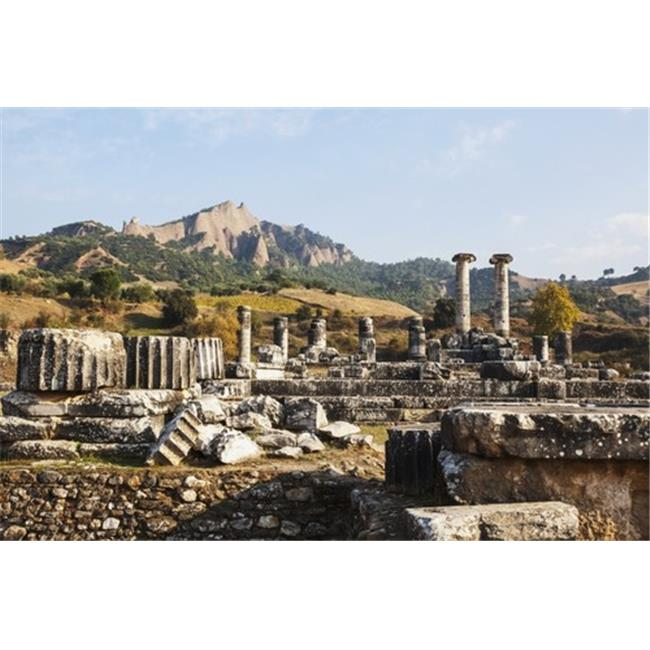 Posterazzi DPI12288781LARGE Ruins of The Temple of Artemis - Sardis Turkey Poster Print by Reynold Mainse, 38 x 24 - Large - image 1 of 1