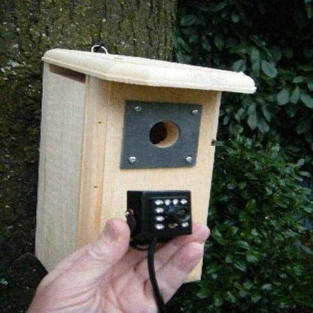 Birdhouse Spy Cam HD Backyard Backyard Birdhouse with Hawk Eye HD Nature Cam installed